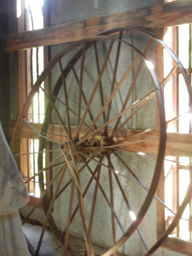 Abandoned Wheels, Seguin, Tx 2016